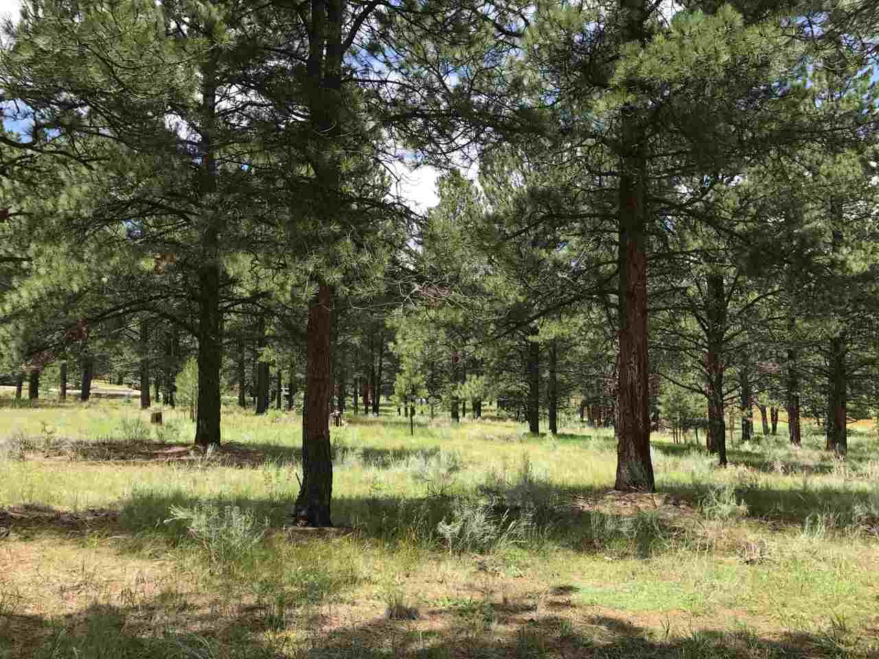 Lot 995 Montoya Terrace, Angel Fire, NM, NM 87710