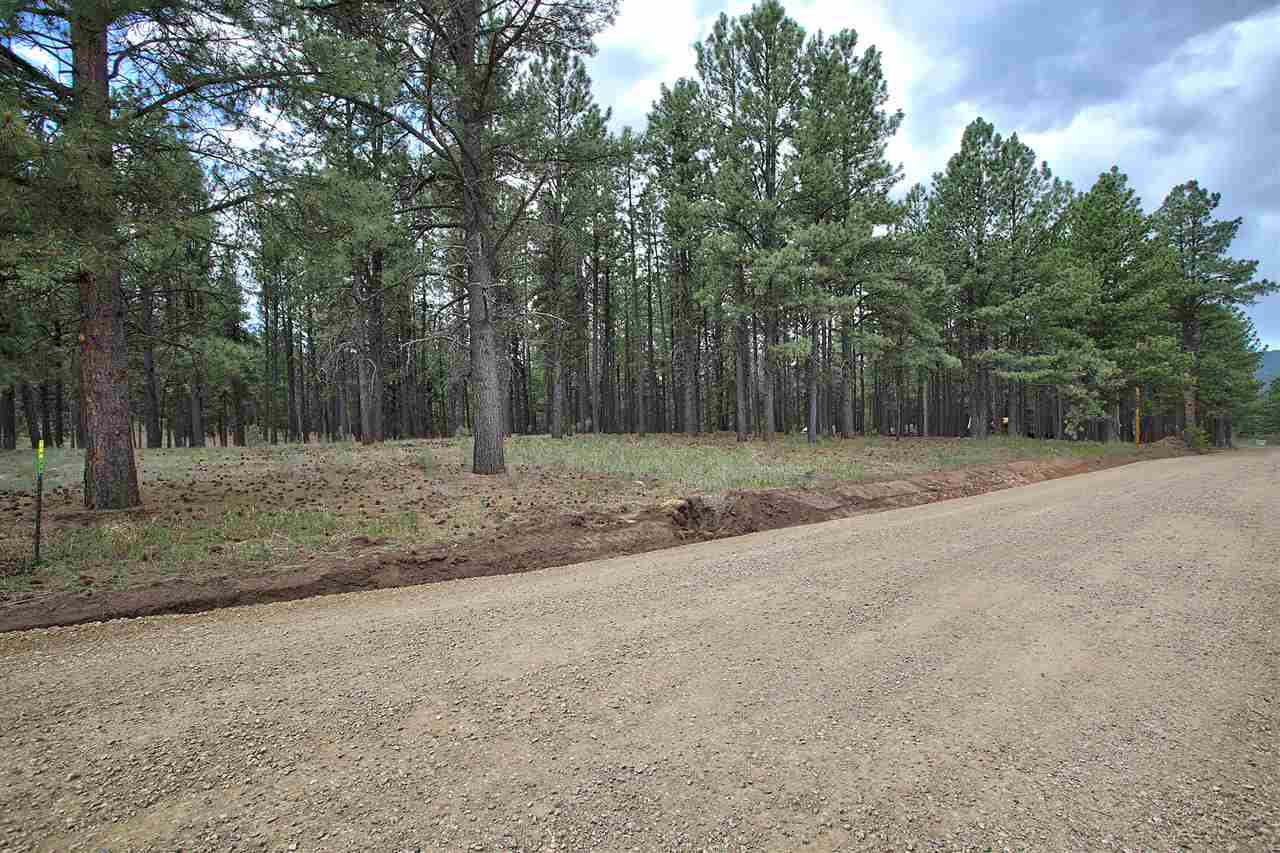 Lot 1 Block 2 Halo Pines Terrace, Angel Fire, NM 87710