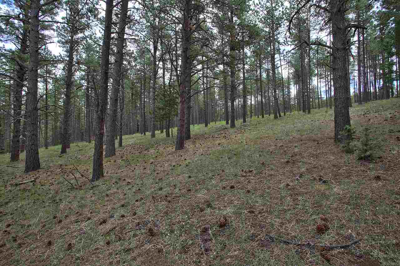 1309 San Pedro, Angel Fire, NM 87710