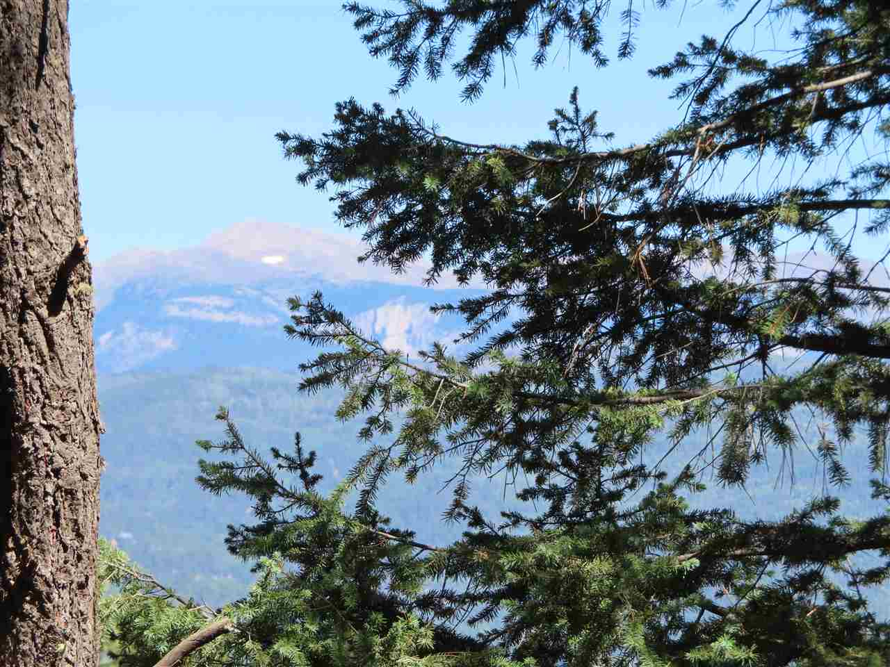 Lot 37 El Camino Real, Angel Fire, NM 87710