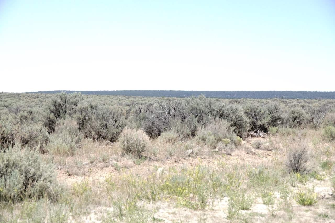 lot 24 off auaje servilletta, Tres Piedras, NM 87577
