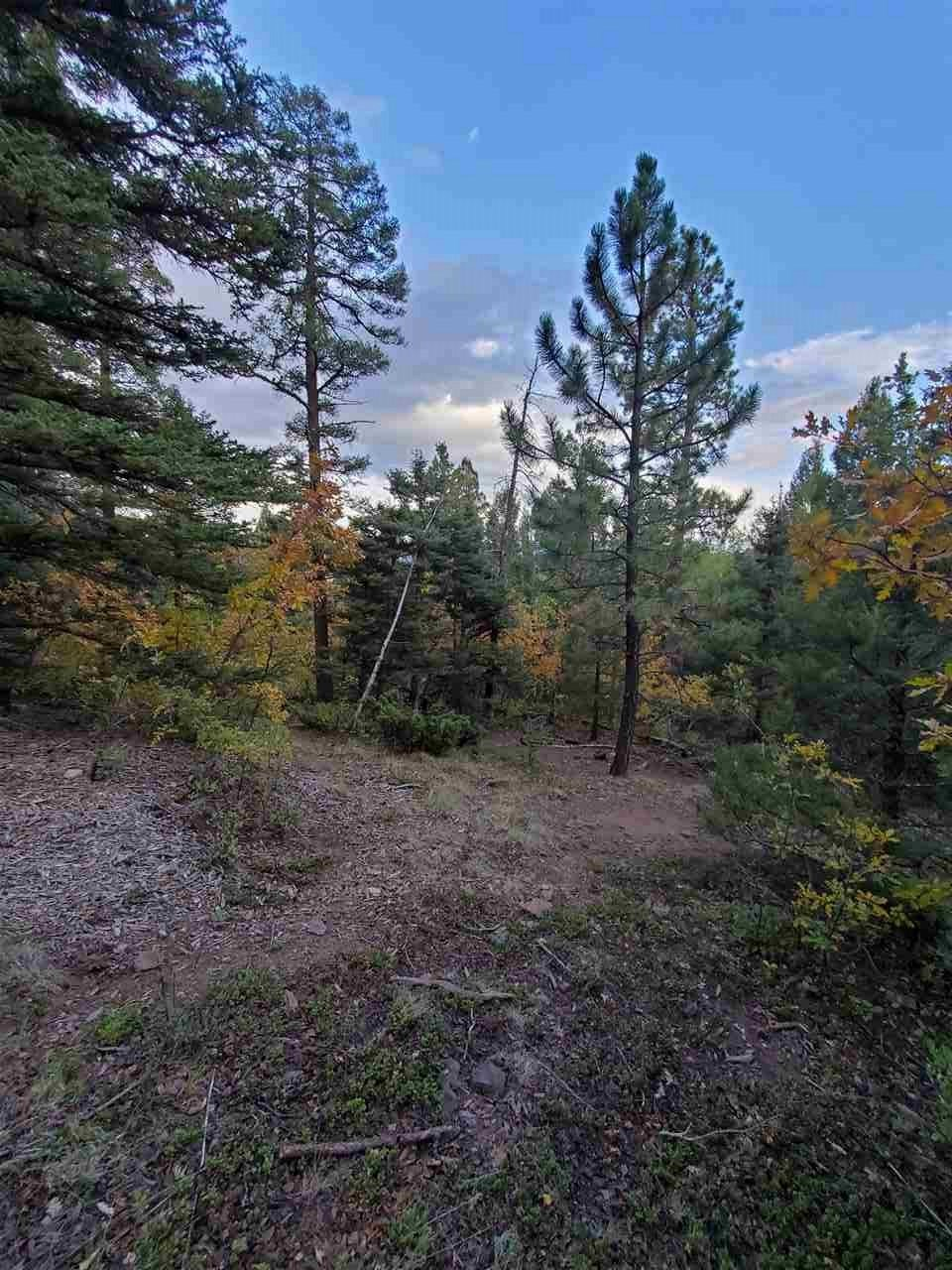 Beautiful acreage in Taos Pines subdivision.   Easy year round access to a lot that could potentially have some fantastic views with thinning.  Priced right to move quick.  Beautiful home site on this gently sloped lot.  Pine and Aspen abound.  Tons of wildlife to enjoy.