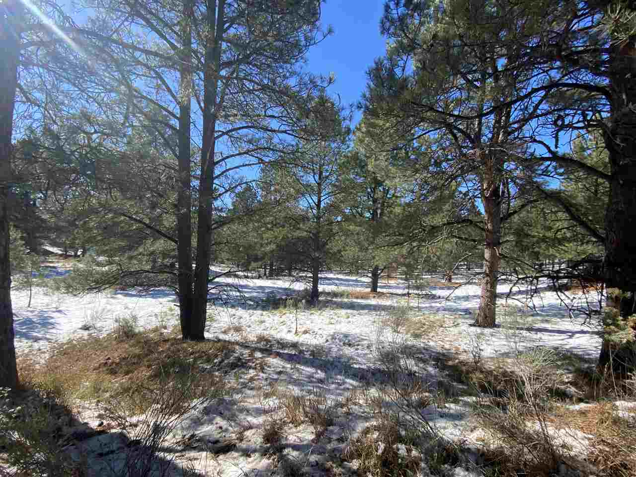 Lot 80 Alta Road, Angel Fire, NM 87710