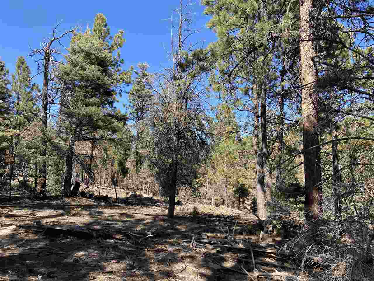 Lot 352 Vail Loop, Angel Fire, NM 87710