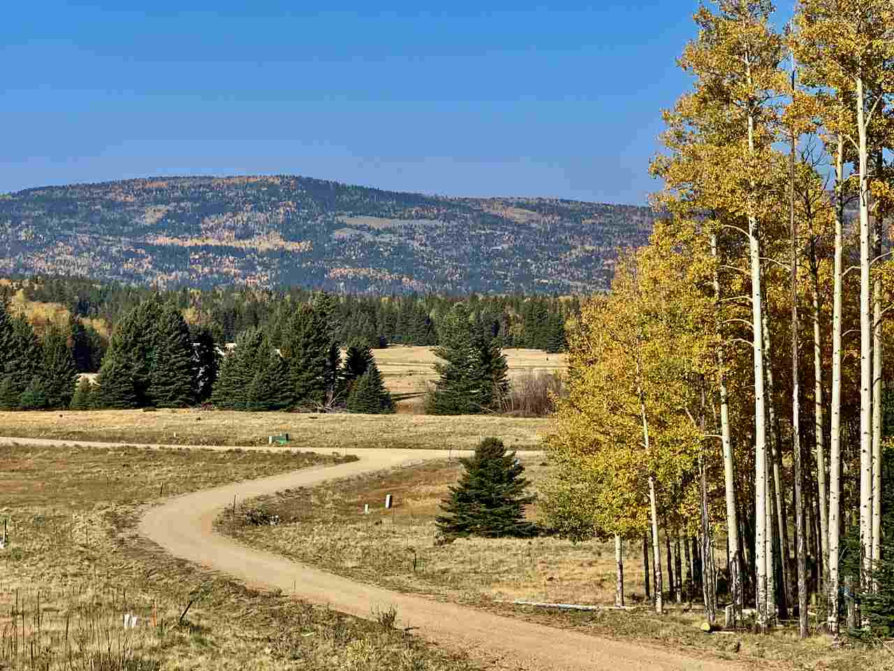 Lot 60 Dancing Bear, Angel Fire, NM 87710
