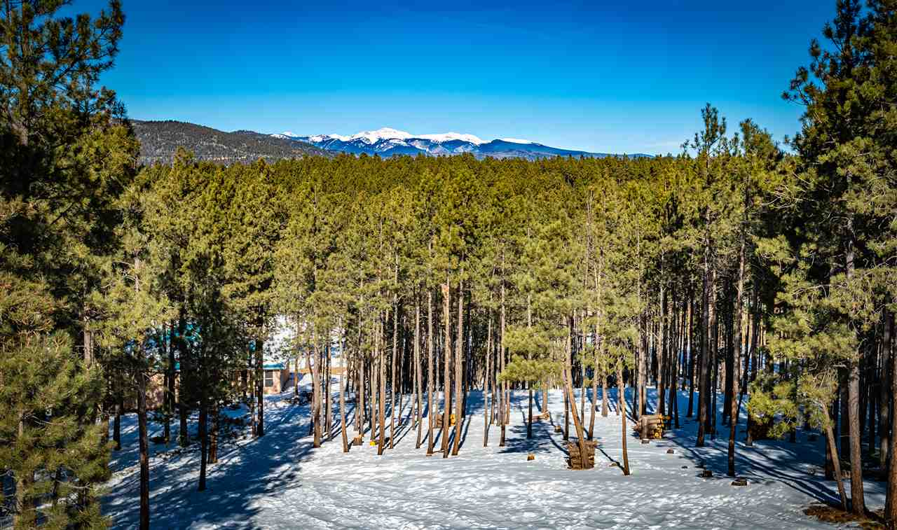50 Saints Terrace, Angel Fire, NM 87710