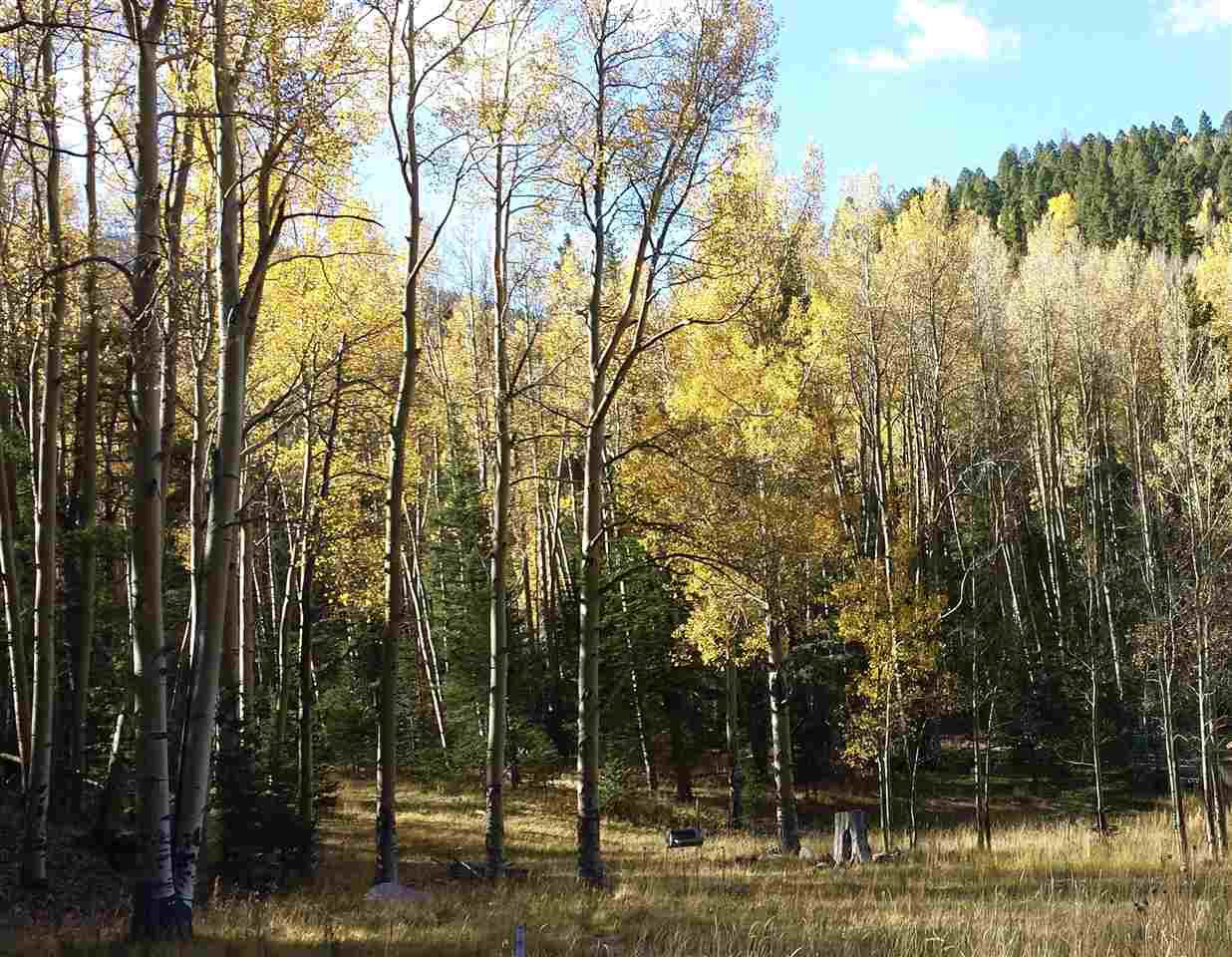 62 Black Copper Canyon, Red River, NM 87557