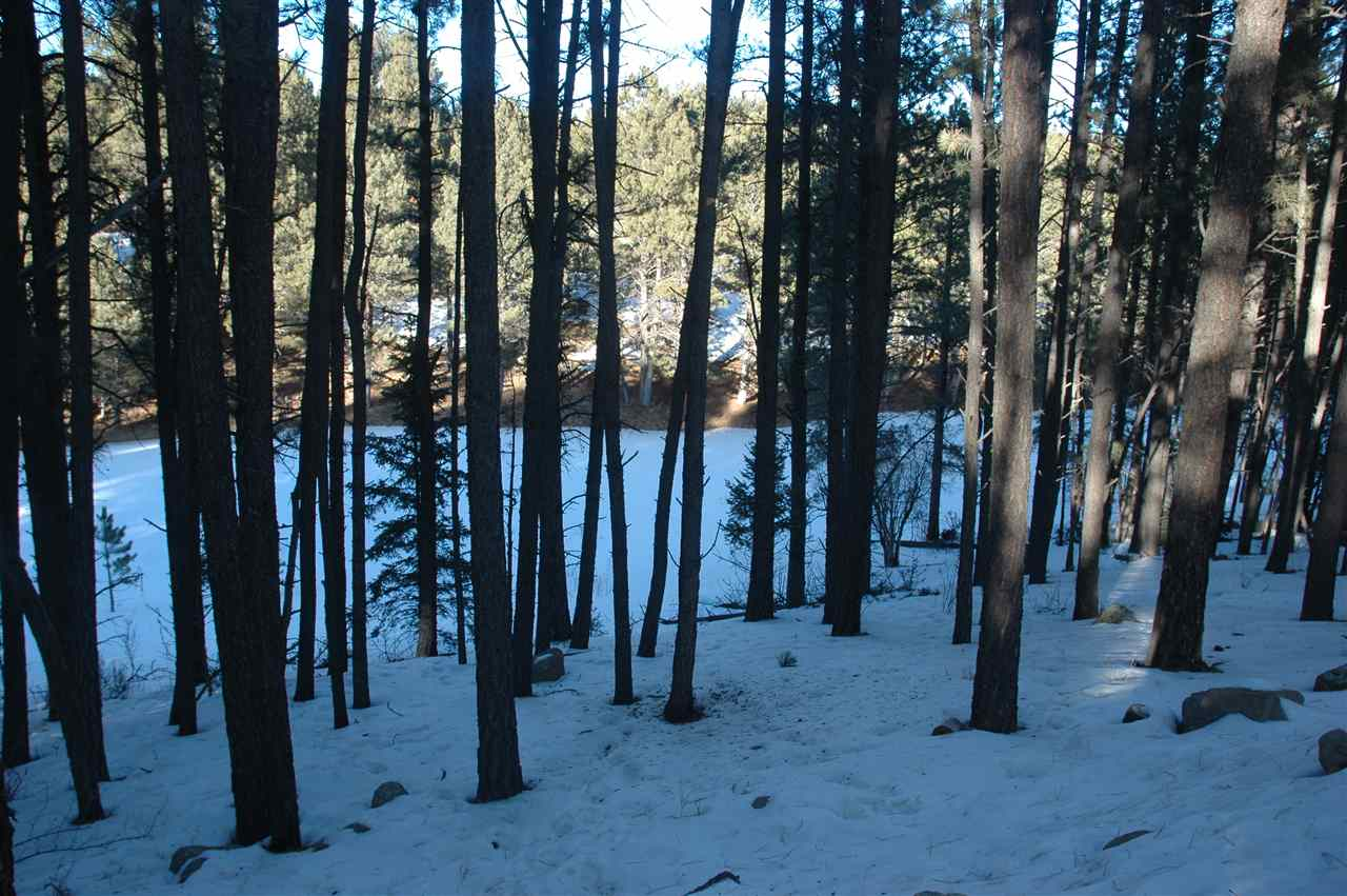 1108 spyglass hill rd, angel fire, NM 87710
