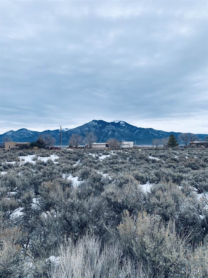 A 2 2 Conejo Road, Taos, NM 87529