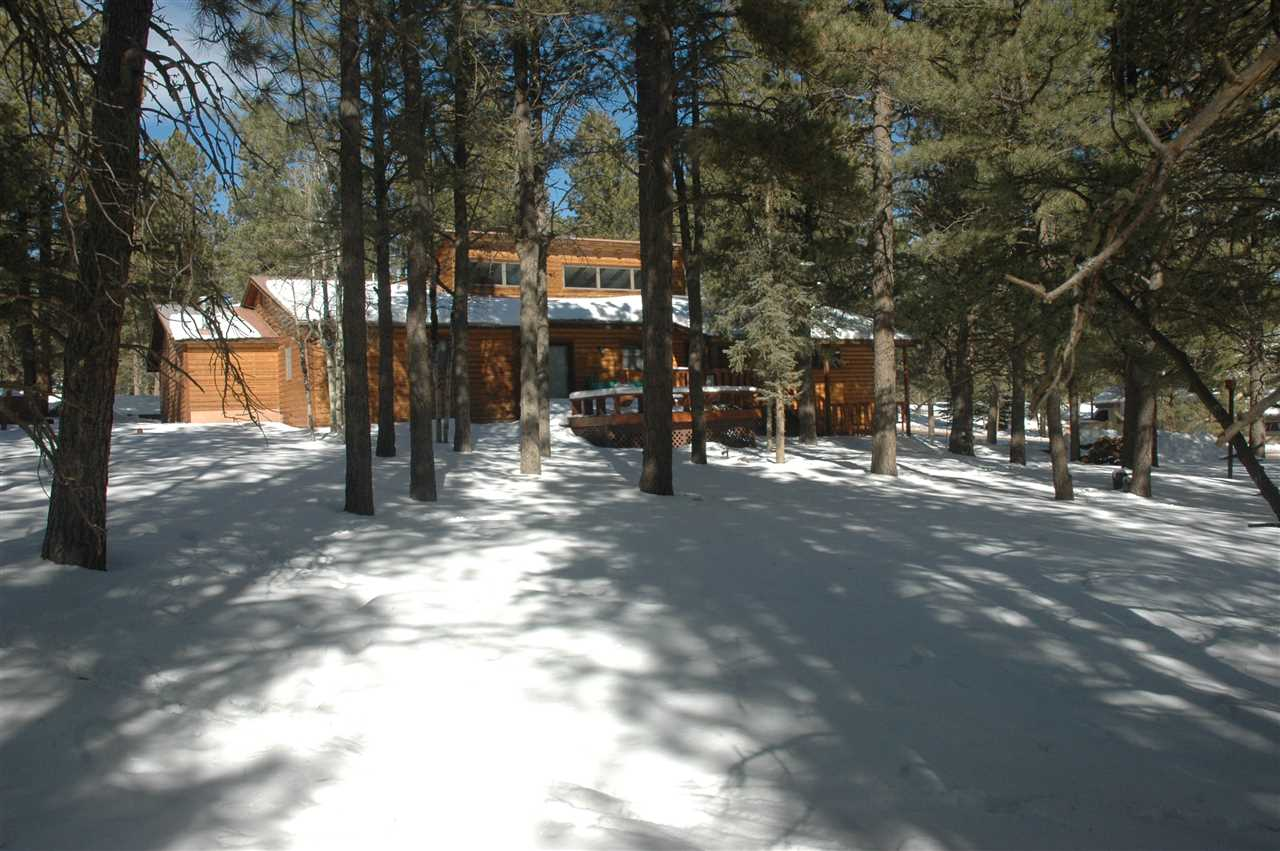 10 woodlands dr, angel fire, NM 87710