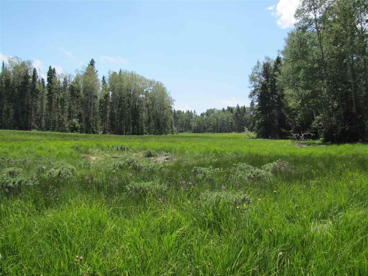 Lot 32 Shields Avenue, Angel Fire, NM 87710