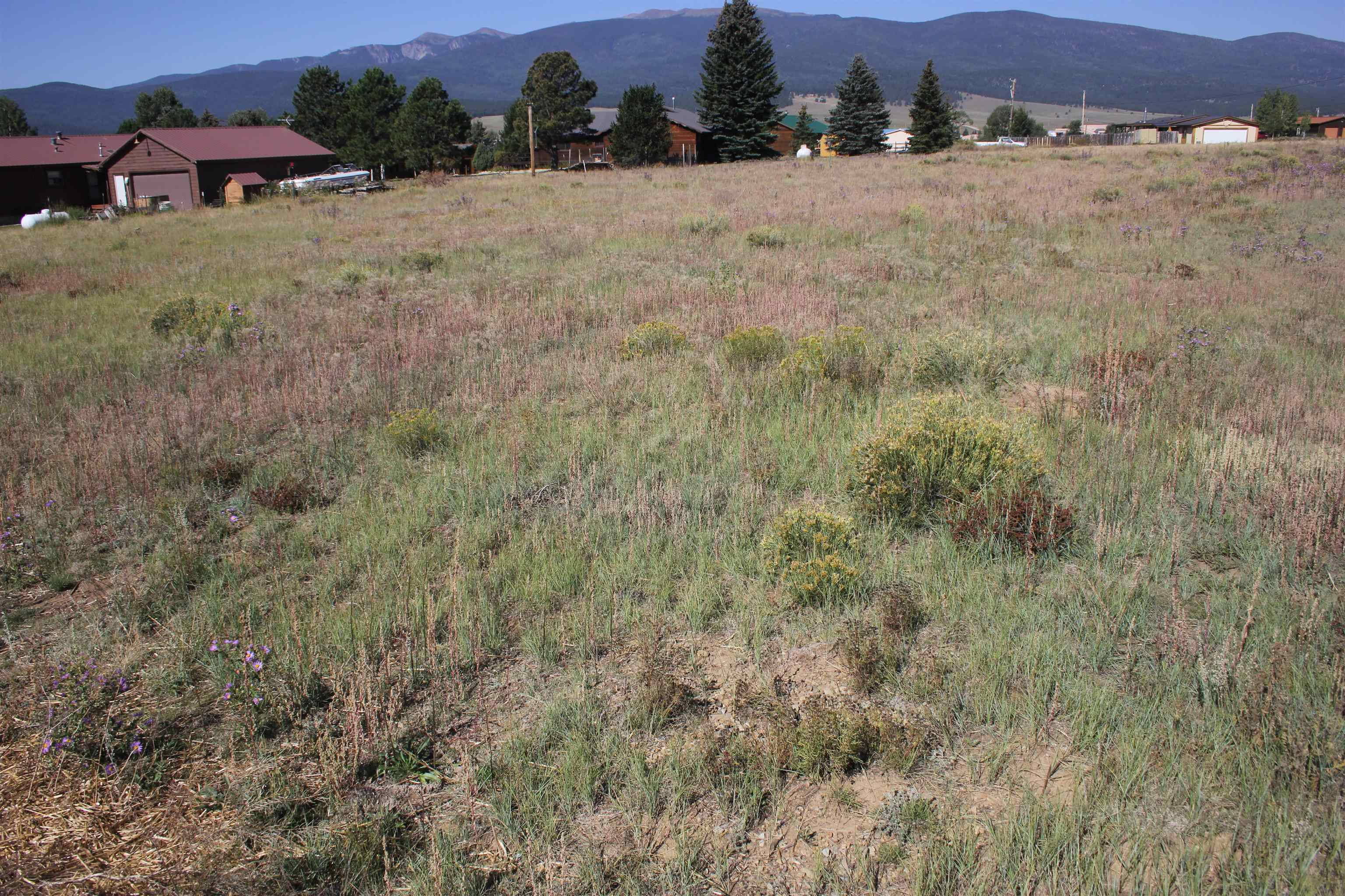 Lot 9 Indian Paintbrush, Eagle Nest, NM 87718