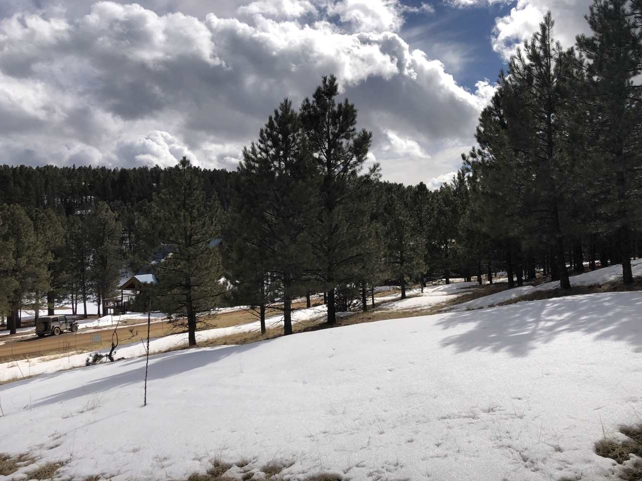 1066 Woodlands Drive, Angel Fire, NM 87710
