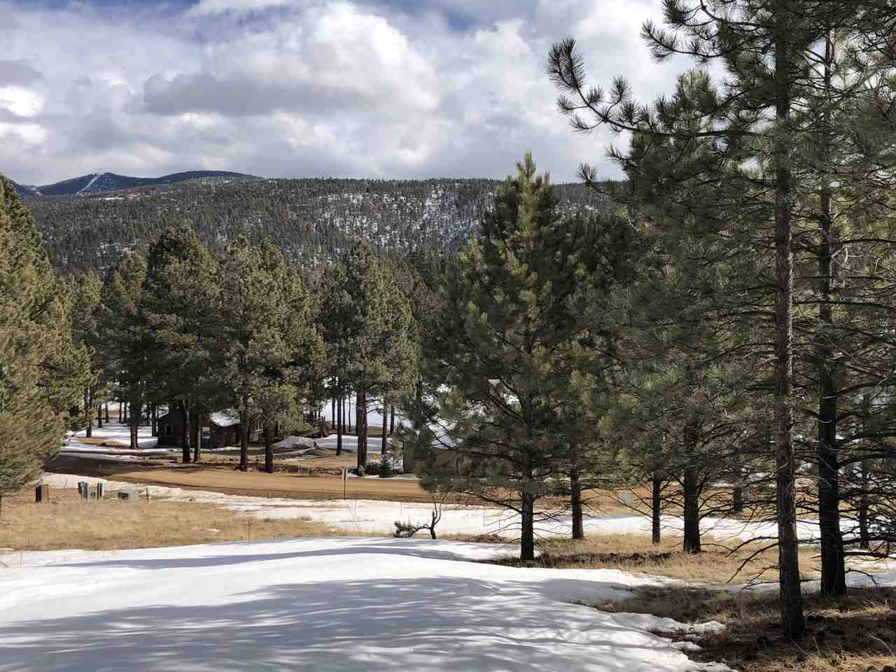 1067 Woodlands Drive, Angel Fire, NM 87710