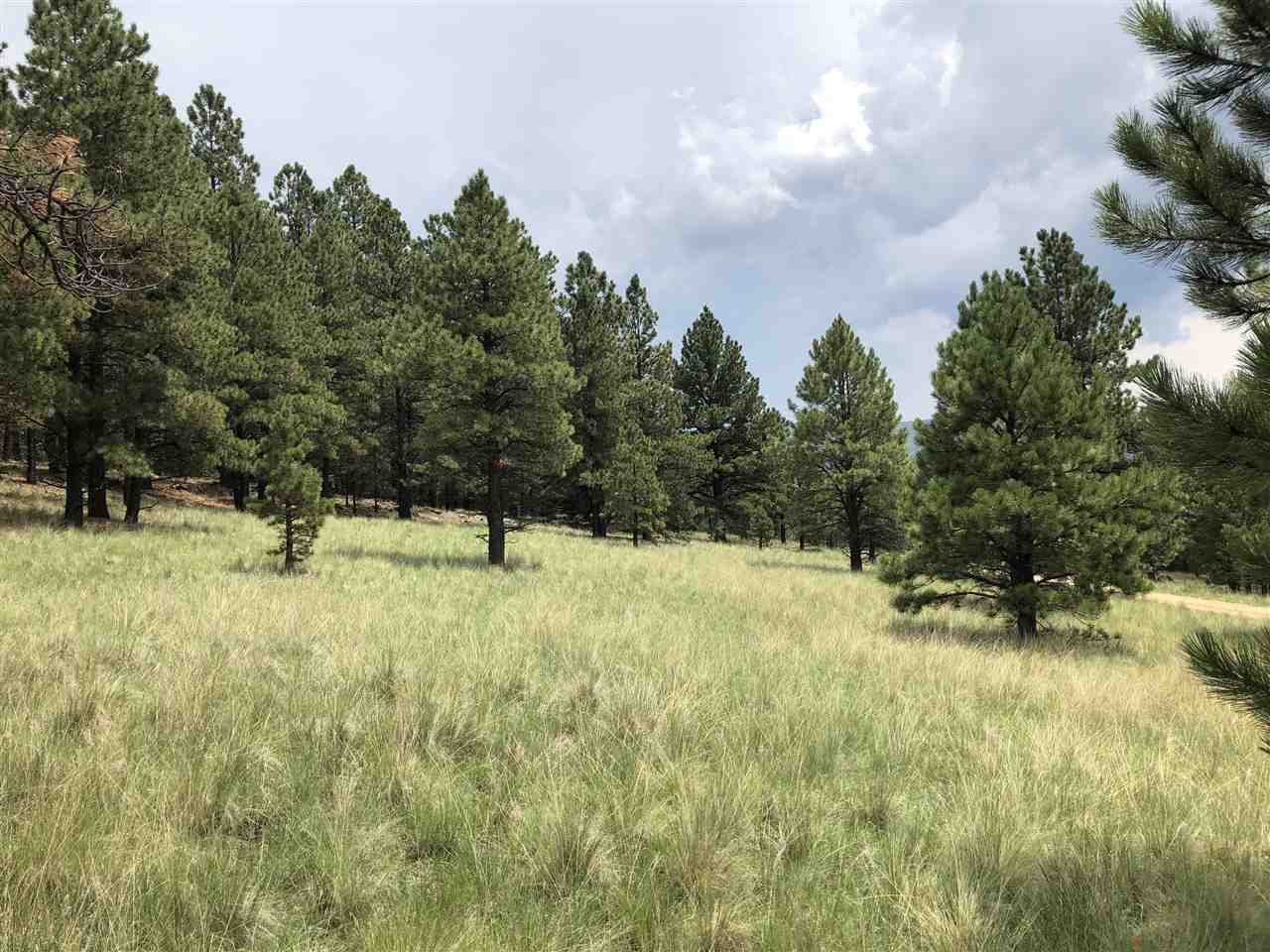 tbd Mora Ranch Road, Black Lake, NM 87722