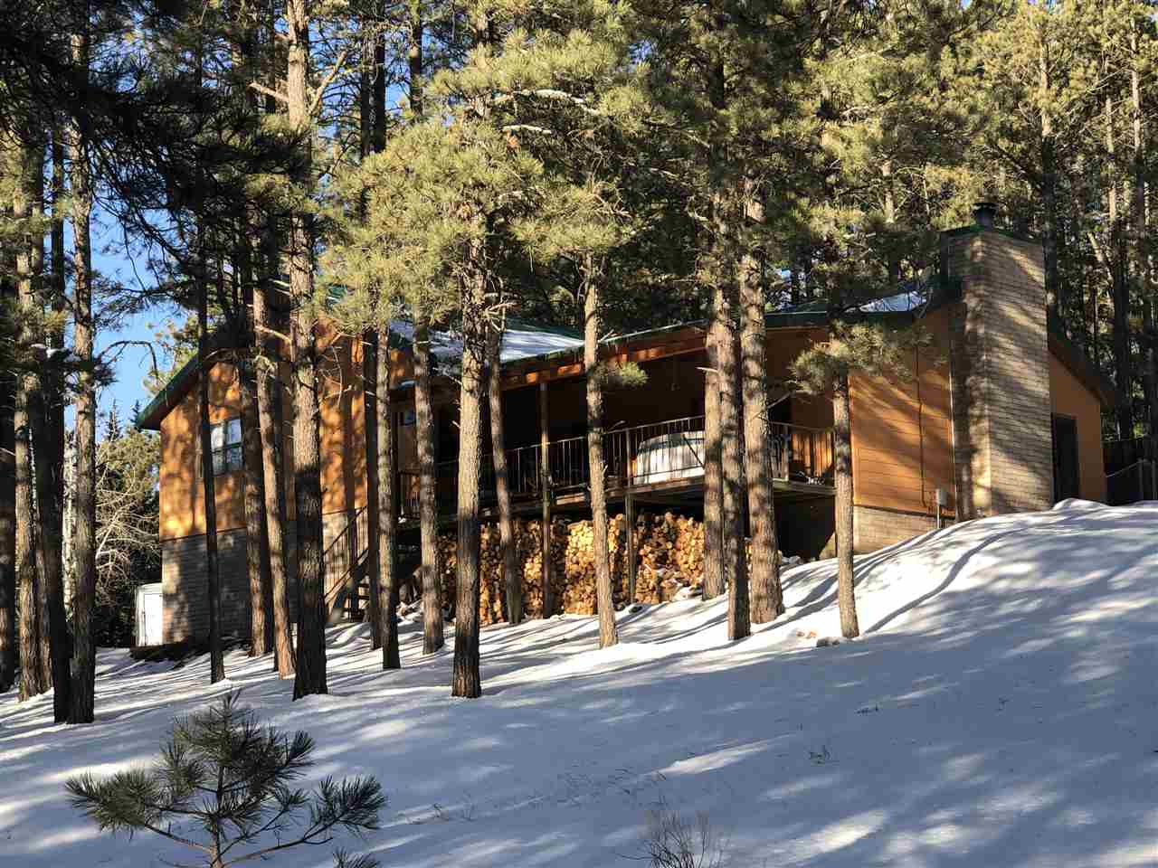 14 Winged Foot Way, Angel Fire, NM 87710