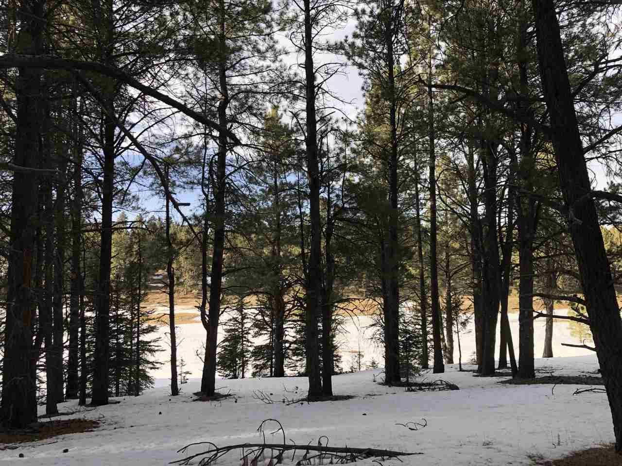 1136 Spy Glass Road, Angel Fire, NM 87710