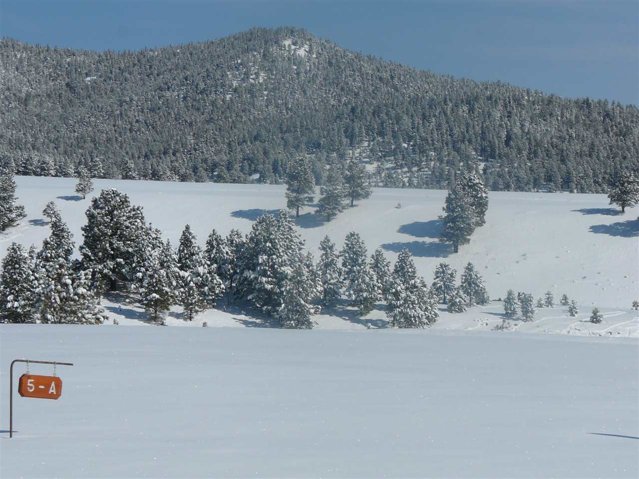 Lot 10 Ash Mountain Subdivision, Angel Fire, NM 87710