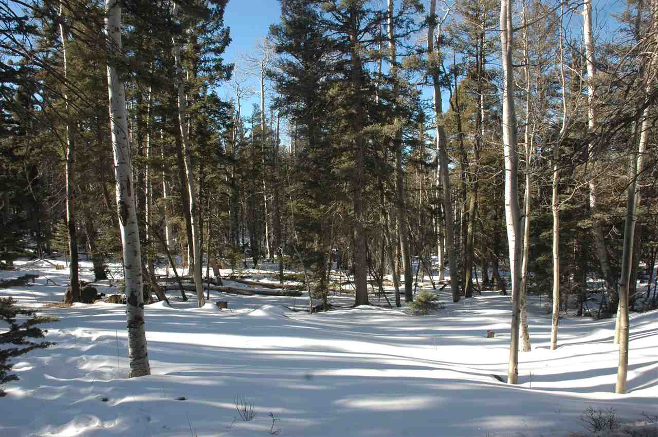 215 taos dr, angel fire, NM 87710