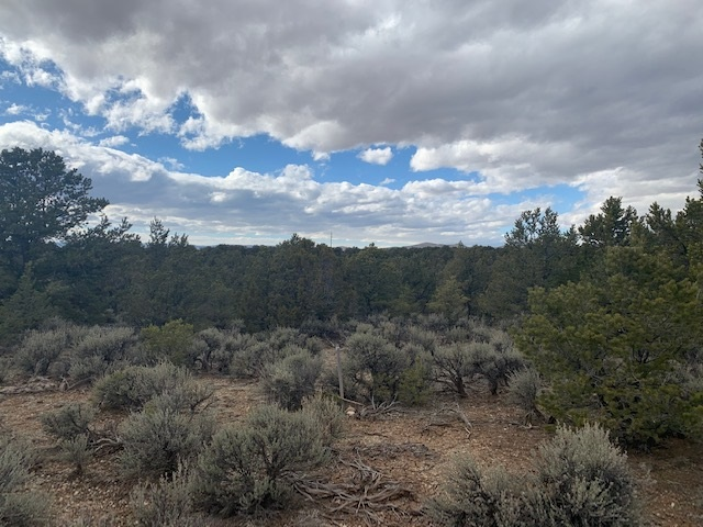 Spanish Peaks Road, Arroyo Hondo, NM 87513