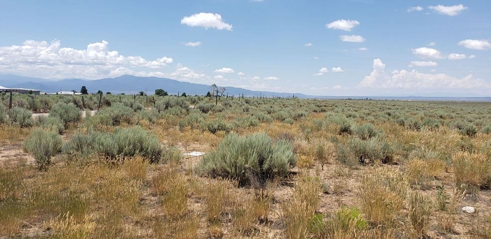 40 Acres Buggy Road, Taos, NM 87571