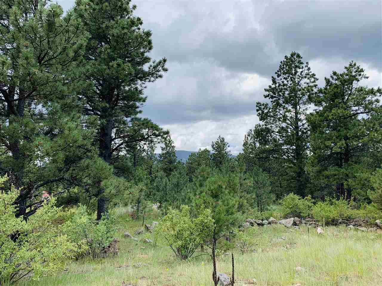 35 Susan Lane, Black Lake, NM 87734
