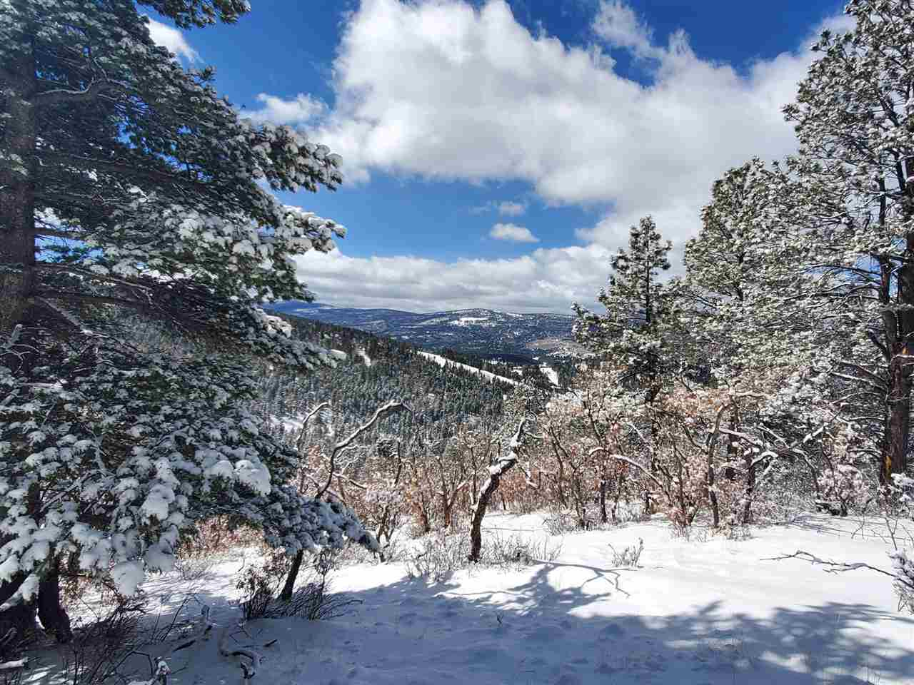 Lot 215 Peak Place, Angel Fire, NM 87710