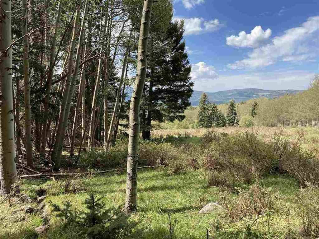 Lot 1564A Cascade Overlook, Angel Fire, NM 87710