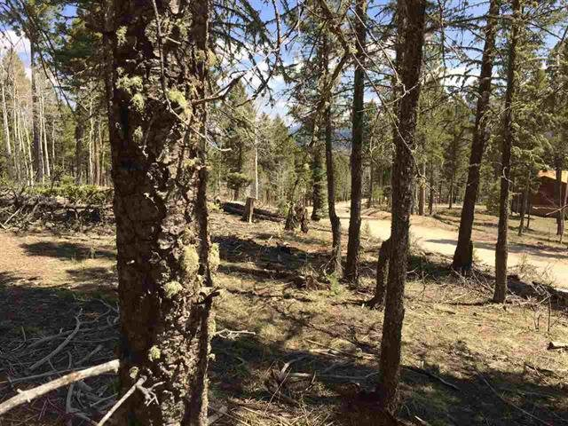 Lot 111A Calle De Los Indios, Angel Fire, NM 87710