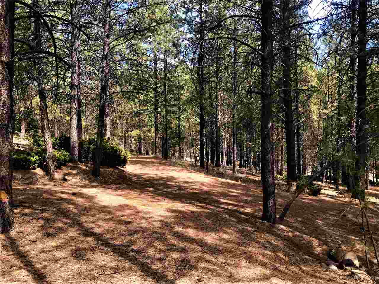 26904 Hwy 64, Taos Canyon, NM 87571
