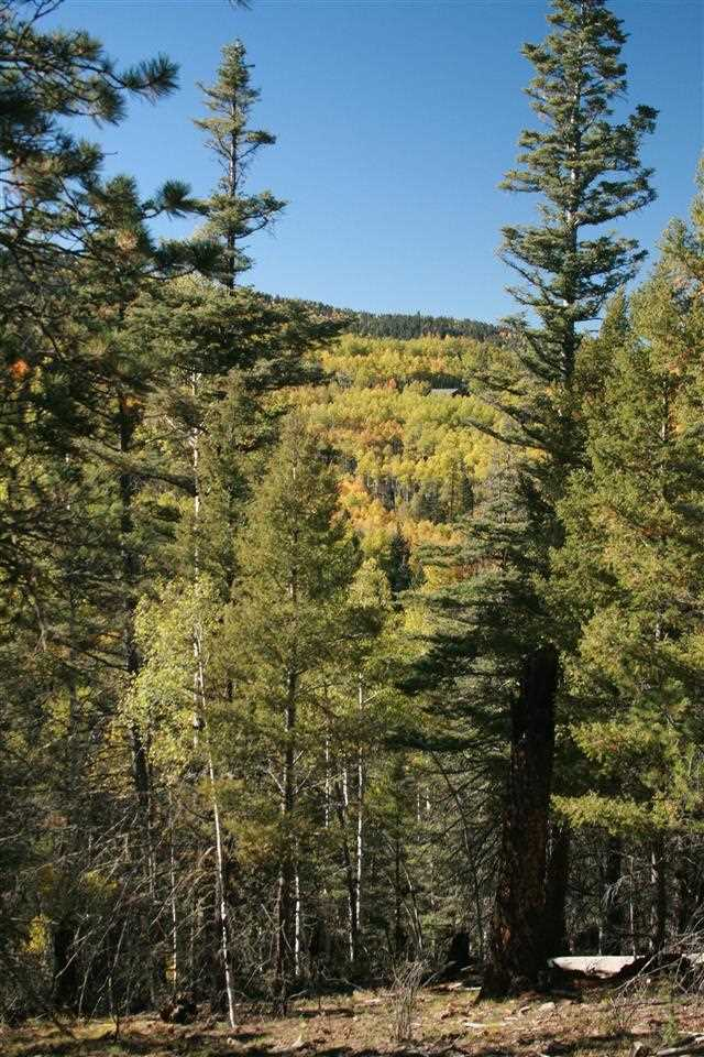 This rare large tract located within the Village of Angel Fire is absolutely spectacular.  Level building area and views to both sides of the property.  Easy access to the view area and privacy allow this unique piece of property to stand out from the rest.  Location is minutes away from skiing and  PGA rated golfing.  You can view this property by using a shared drive at any time.  Currently being plowed so that you can see the entire 4 acre parcel and the views to boot. Owner will finance.