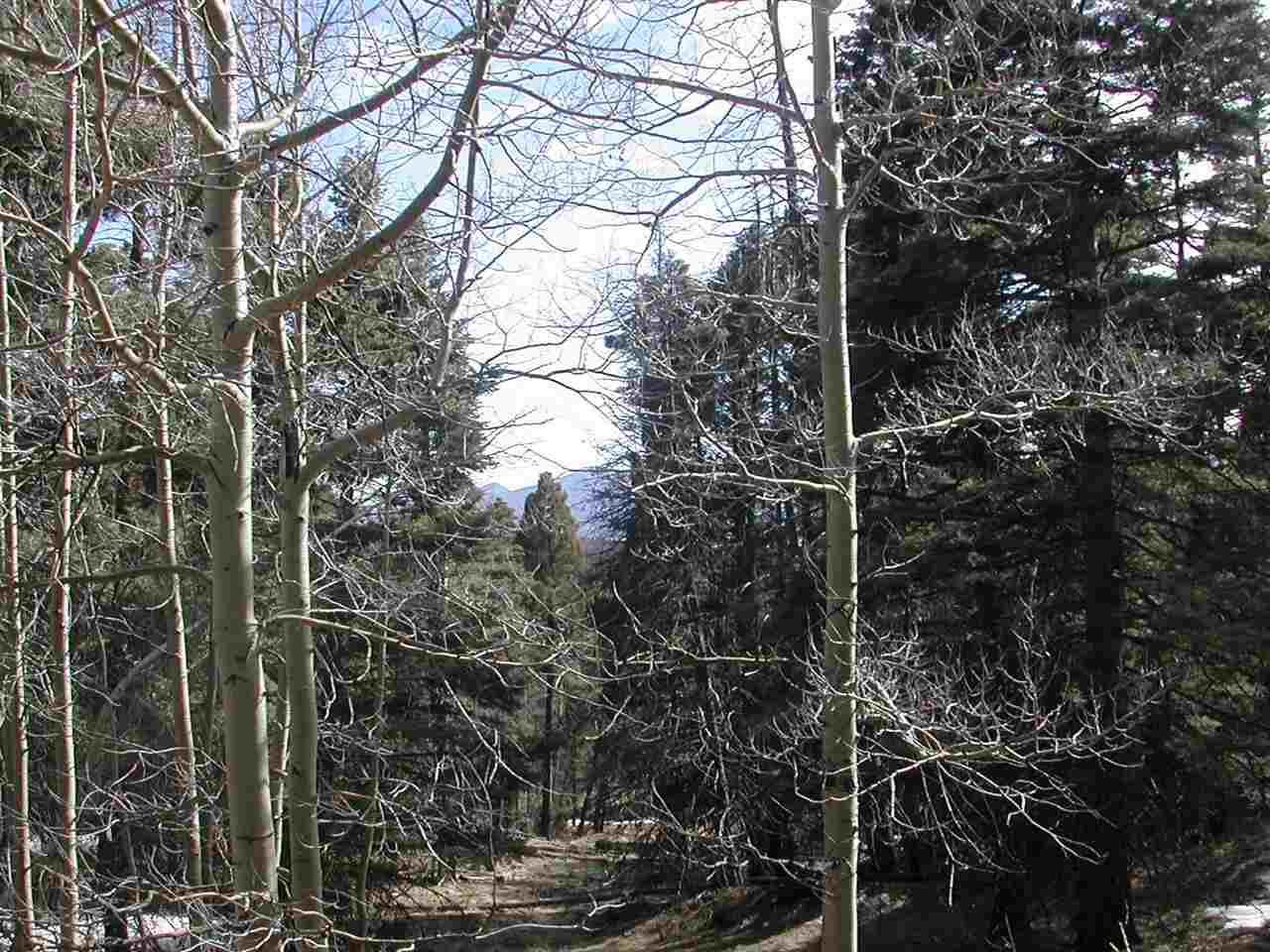 Great lot with view and very close to ski drop off.  .79 acres is good size for a conventional septic.  Wooded lot with fir and aspens.
