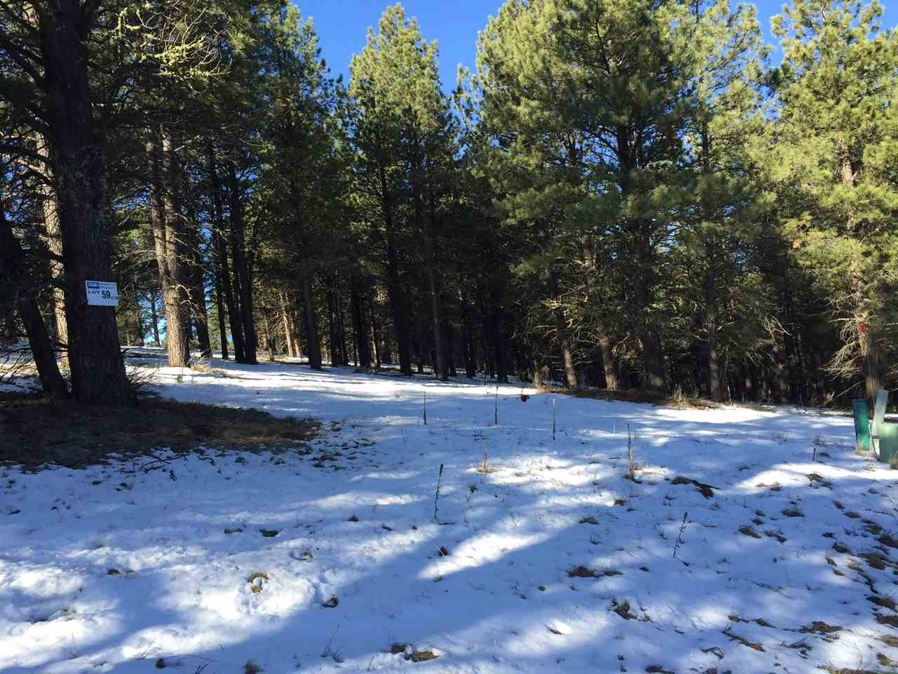 Great lot with paved road access in front.  Close to the Community Center and also zoned for multi- family.  Location great for future rentals.  Proximity to ski area a plus.  Beautifully treed with mature pine.