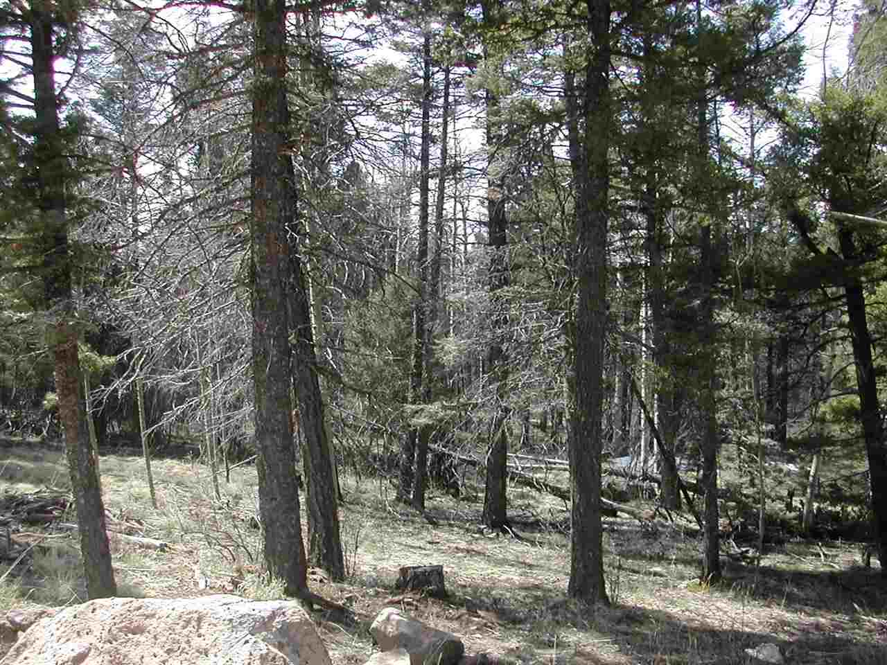Lot is in a great location with nice views and very close to Heading Home.  This would be a great place to build your mountain dream home.  The selling price is so great for this beautiful property.
