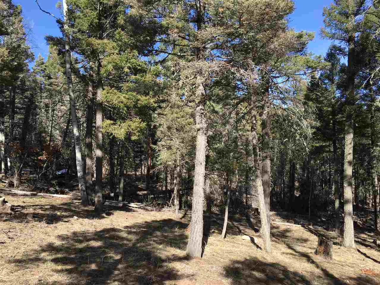 Level wooded lot minutes from Monte Verde Lake and other resort amenities as well as Carson National Forest.