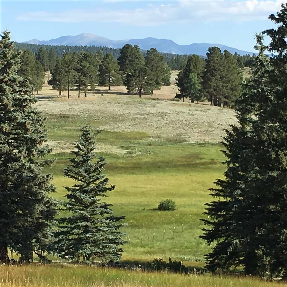 Absolutely gorgeous 3 acre lot tucked away six miles from the heart of Angel Fire.  Big views of Wheeler Peak and beautiful grassy meadows with mature pines. Small year round stream on property. The perfect place to build your dream home.  Road maintained by county to the gate after the gate it is about a block to the property.  Power close by and you must drill a well.  Rare find to be so close to Angel Fire with this view, yet be secluded.