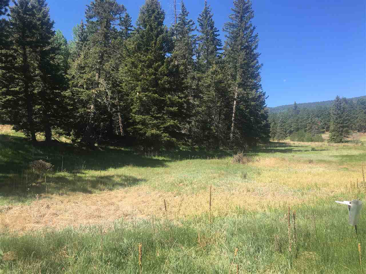 This .72 acre lot is in a beautiful area with views of Wheeler Mountain and Monte Verde Lake just across the street.  Very close to fishing, golfing and all other amenities.  Abundant wildlife and nicely treed property.  Electricity, phone and water to lot.   Great place to build your Mountain Dream Home.