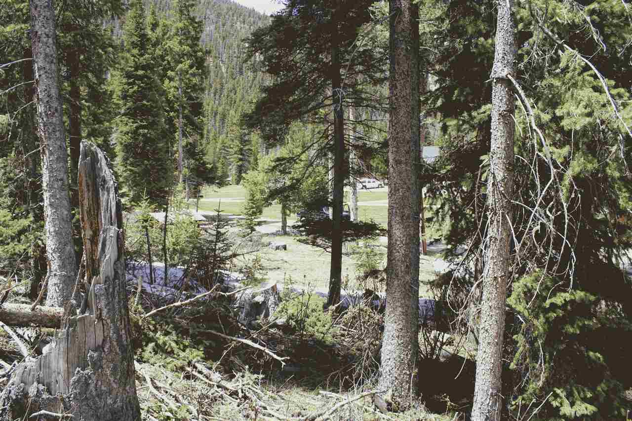 LOT 23 Hidden Valley, Red River, NM 87558